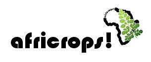 africropsWebheader