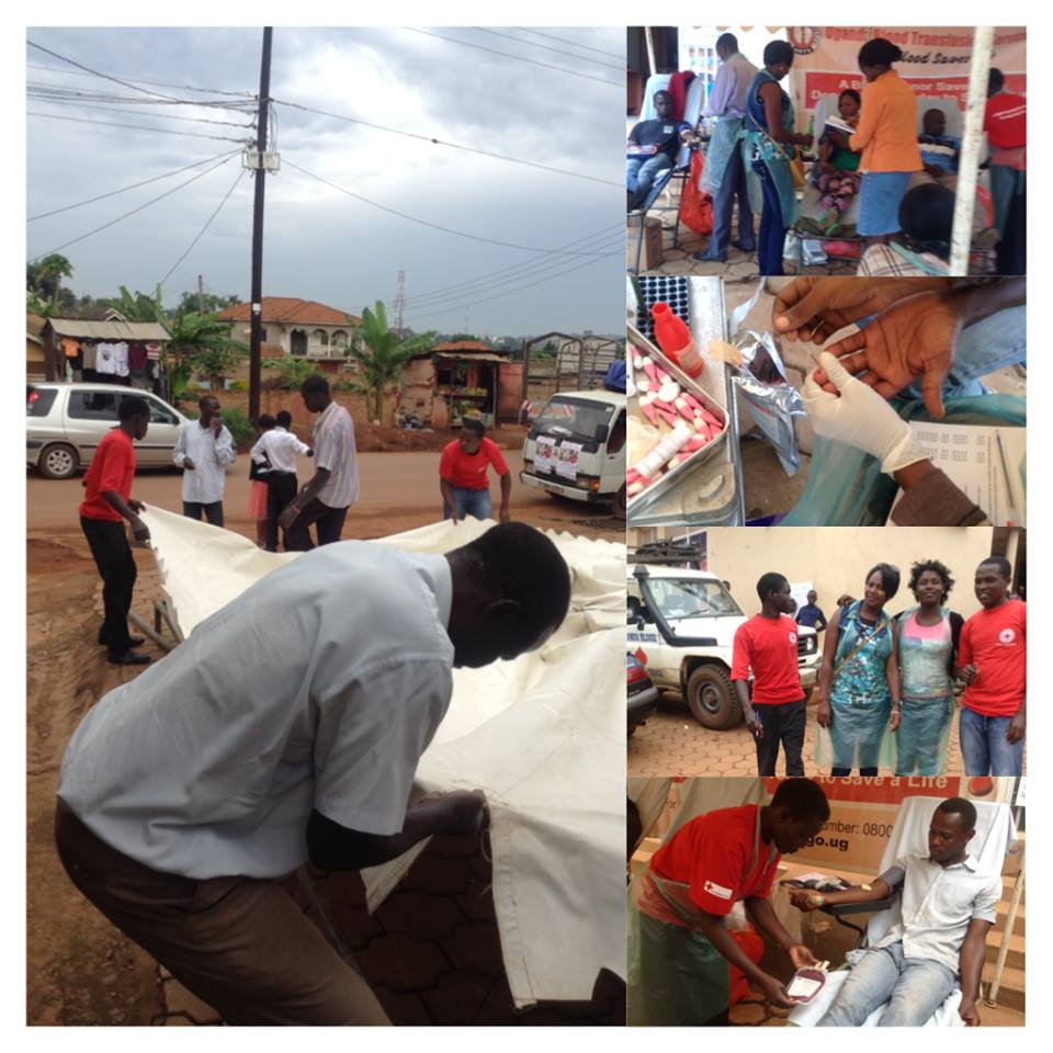 AMFRI Staff taking part in voluntary work and training with Red Cross